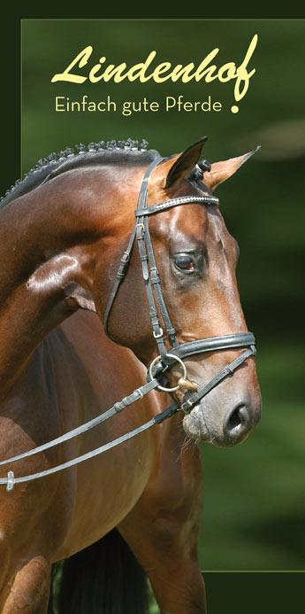 Pferde- und Schweinezucht Eisenmenger / Lindenhof